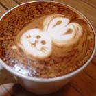 咖啡教學-咖啡拉花班